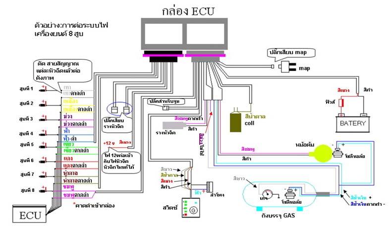 Super Prins Autogas Wiring Diagram Somurich Com Wiring 101 Xrenketaxxcnl